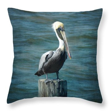 Perched Pelican Throw Pillow by Carla Parris