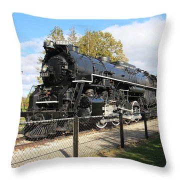 Pere Marquette Throw Pillow