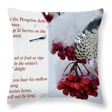 Peregrine Song Throw Pillow