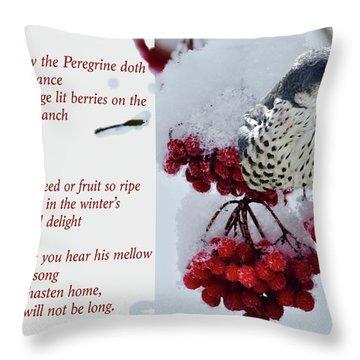 Peregrine Song Throw Pillow