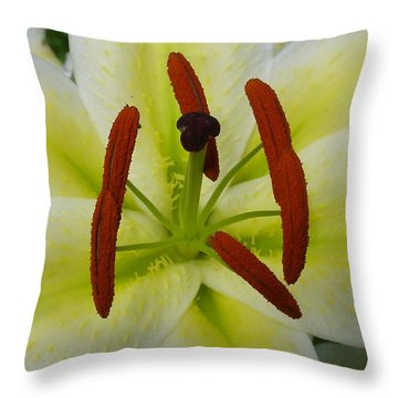 Perfect Beauty Throw Pillow