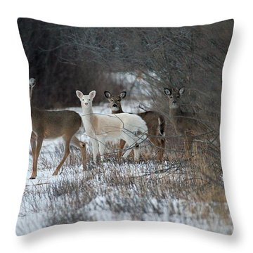 Perfect Blend Throw Pillow
