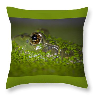 Perfect Camouflaging Throw Pillow