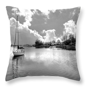 Perfect Combination Throw Pillow