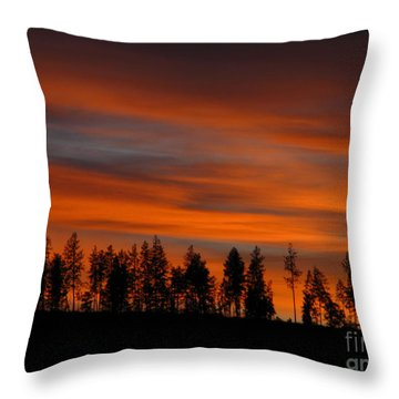 Perfect Evening Throw Pillow by Greg Patzer