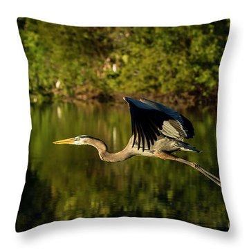 Perfect Flight Throw Pillow