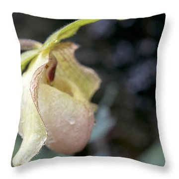 Throw Pillow featuring the photograph Perfect Lady Slipper by Cathy Donohoue
