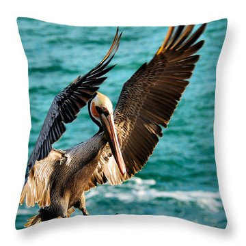 Throw Pillow featuring the photograph Perfect Landing by Howard Bagley