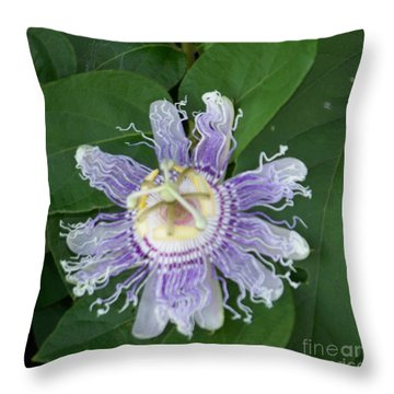 Perfect Passion Flower Throw Pillow