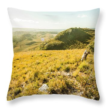 Picture Perfect Pastures Throw Pillow