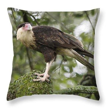 Perfect Perch Throw Pillow