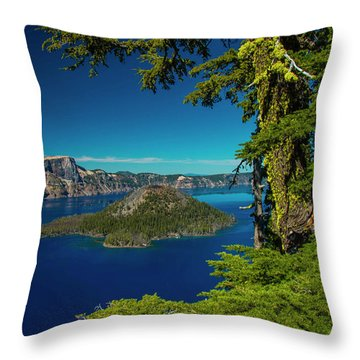 Perfect Picture Frame Throw Pillow
