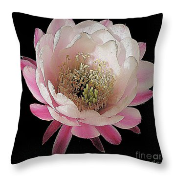 Perfect Pink And White Cactus Flower Throw Pillow