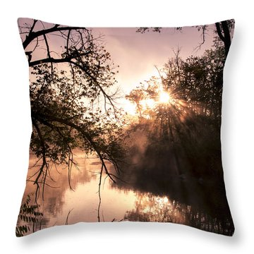 Perfect Reflections Throw Pillow