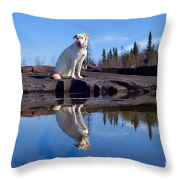 Perfect Reflections Throw Pillow by Sandra Updyke