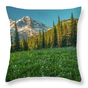Perfect Setting Throw Pillow