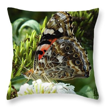 Perfected By Nature - Painted Lady Throw Pillow