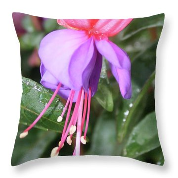 Perfection In Nature Throw Pillow