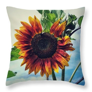 Throw Pillow featuring the photograph Perfectly Imperfect by Karen Stahlros