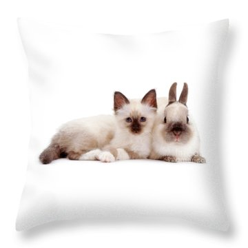 Perfectly Paired Pals Throw Pillow