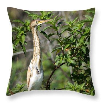 Periscope Up Throw Pillow