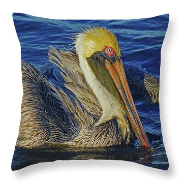 Perky Pelican II Throw Pillow