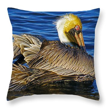 Perky Pelican Throw Pillow by Larry Nieland