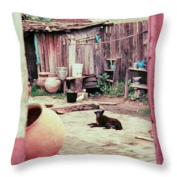 Throw Pillow featuring the photograph Perro On The Patio by Charles McKelroy