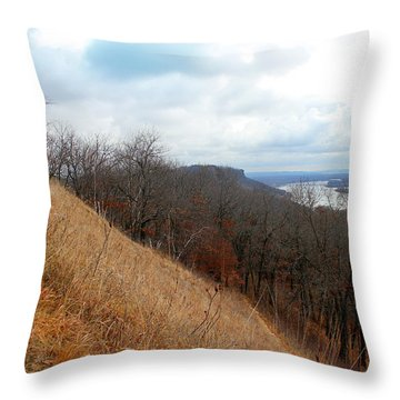 Perrot State Park Mississippi River 5 Throw Pillow