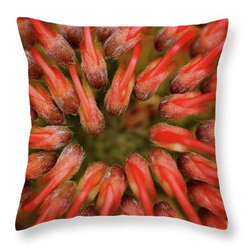 Throw Pillow featuring the photograph Perseverance by Stephen Mitchell