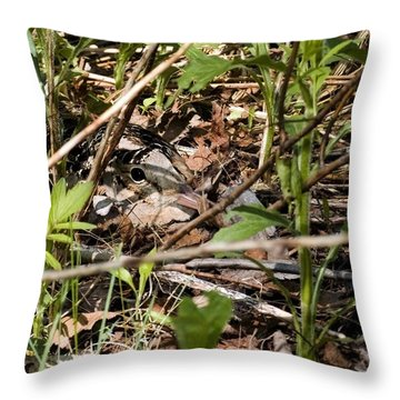 Perspective Of A Camouflage Throw Pillow