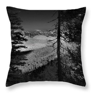 Perspective Range Throw Pillow