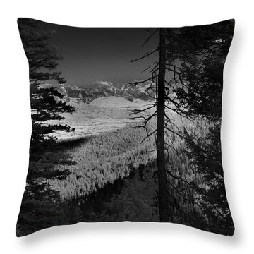 Perspective Range Throw Pillow