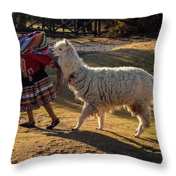 Peru Throw Pillow by Will Burlingham