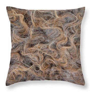 Throw Pillow featuring the photograph Peruvian Burro Curls by Britt Runyon