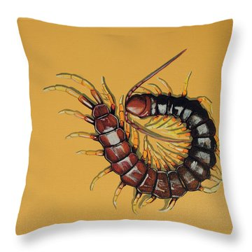 Throw Pillow featuring the painting Peruvian Centipede by Jude Labuszewski