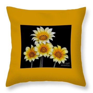 Peruvian Daisies Throw Pillow