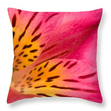Peruvian Lily Macro Throw Pillow