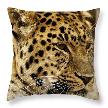Pesive Throw Pillow by Gary Bridger