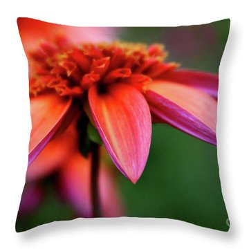 Petal Perfect Throw Pillow by Sheila Ping