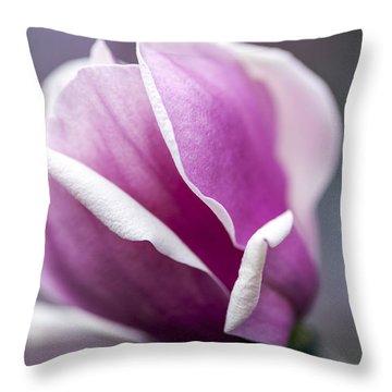 Throw Pillow featuring the photograph Petals by Edward Kreis