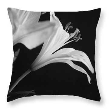 Throw Pillow featuring the photograph Petals' Light by Eric Christopher Jackson