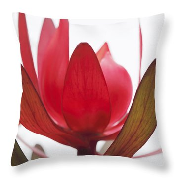 Petals Throw Pillow by Margaret Hormann Bfa