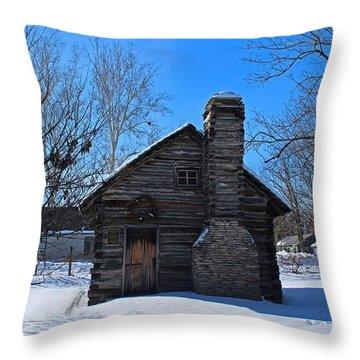 Peter Navarre Cabin I Throw Pillow