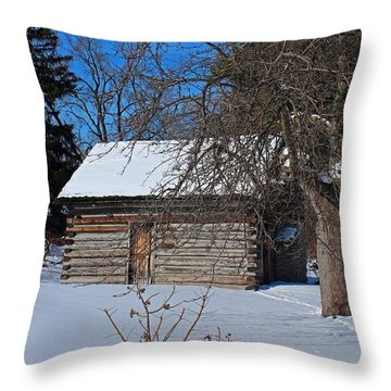 Peter Navarre Cabin II Throw Pillow