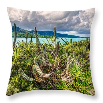 Peterborg Cactus Throw Pillow