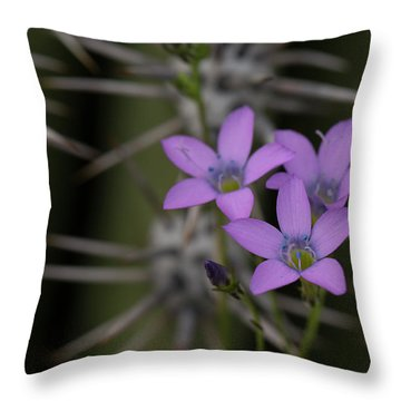Petite Galia Throw Pillow