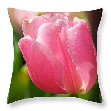 Petite Pink Throw Pillow by Katherine White