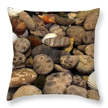 Petoskey Stones With Shells L Throw Pillow