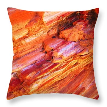 Petrified Abstraction No 1 Throw Pillow